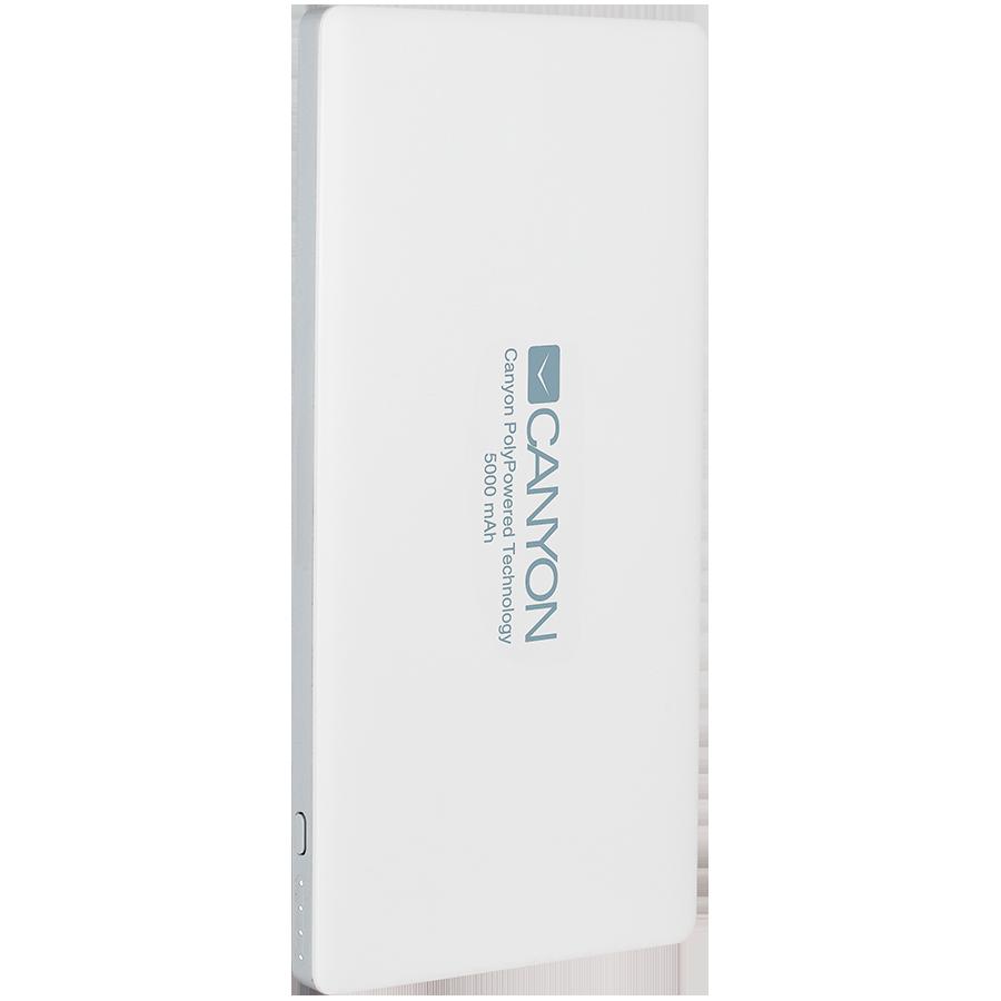 Купить Зарядное устройство CANYON CNS-TPBP5