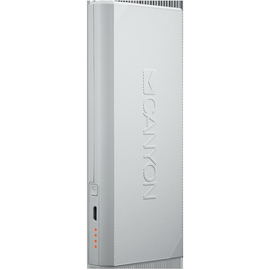 Купить Зарядное устройство CANYON CNE-CPBF100